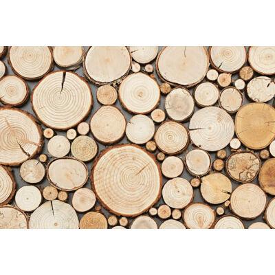 stegu purewood